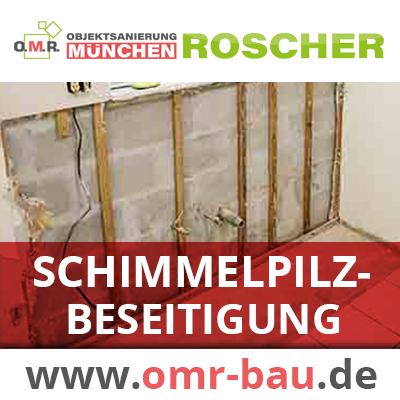 Schimmelpilzbeseitigung / Schimmelpilzsanierung München