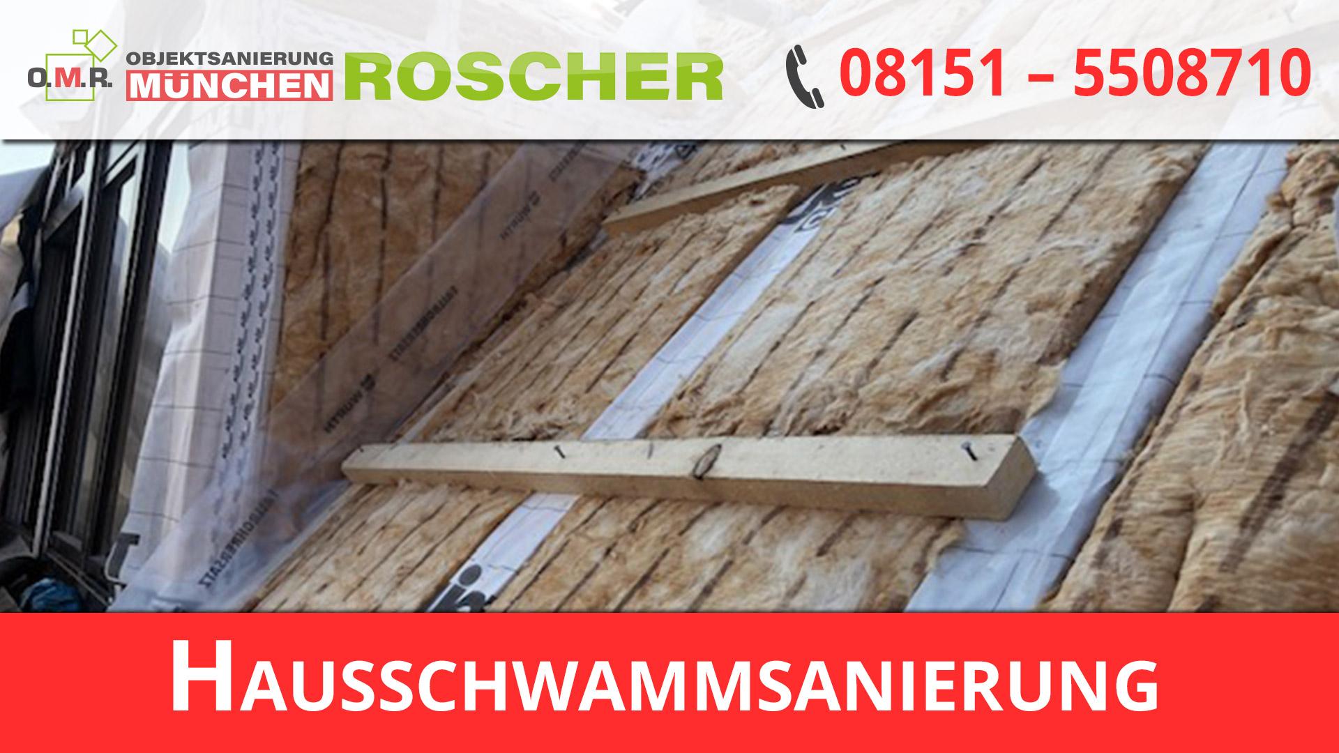 Hausschwammsanierung München